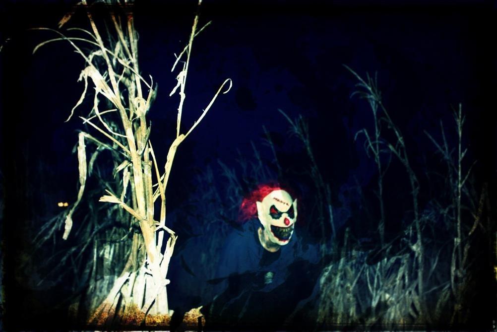 Halloween Events In Wilmington Nc