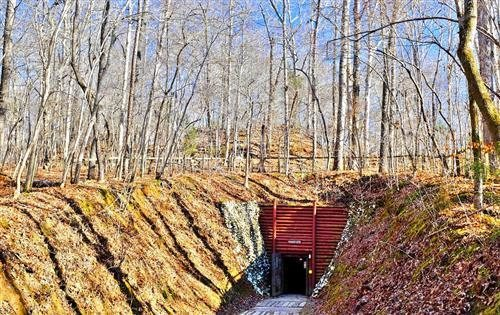 Gold Mine Tours In Nc